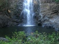 Kosta Rika'da bir şelale